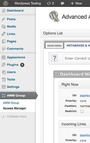 Backend Screenshot - AAM WP Plugin