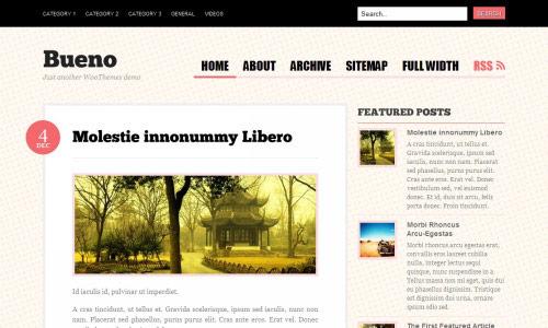 Bueno Wordpress Theme