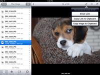Dropbox on iPad